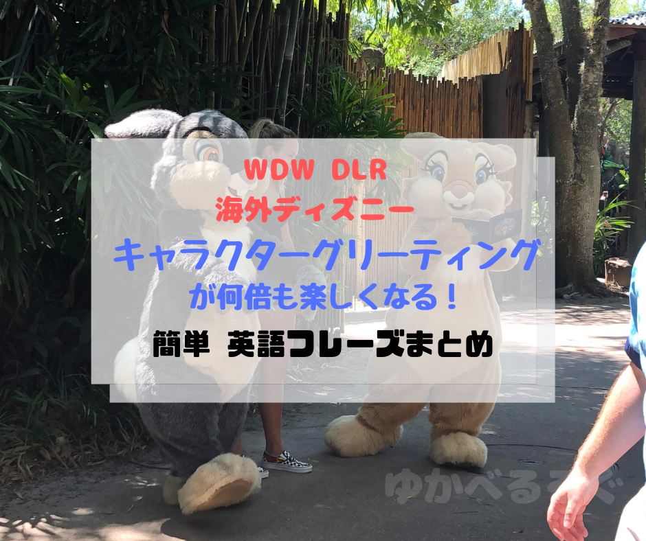 海外ディズニーキャラクターグリーティングWDWアニマルキングダムの風景